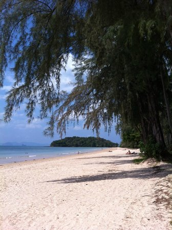 Check Inn Resort Krabi: Beach
