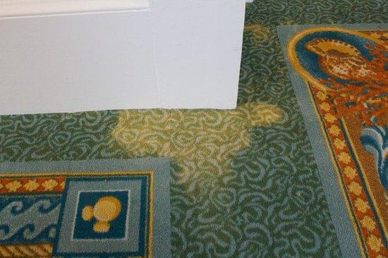 Disney's Beach Club Resort:                   Stained carpet on 4th floor II                 