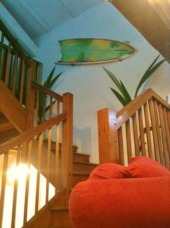 Surf Hostel Bed & Breakfast : Stairs