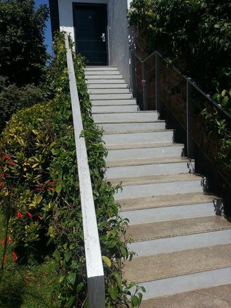 The Windflower Resort & Spa, Mysore: Stairs