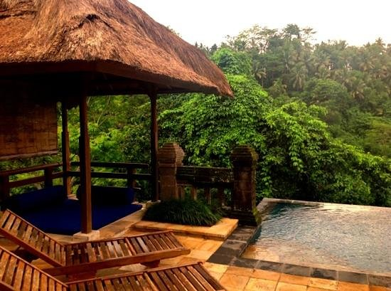Puri Wulandari Boutique Resort:                   Shade by the pool