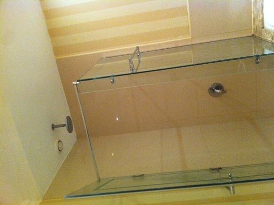 Sonesta Hotel, Tower & Casino Cairo: Shower ( turn it off when shampooing )