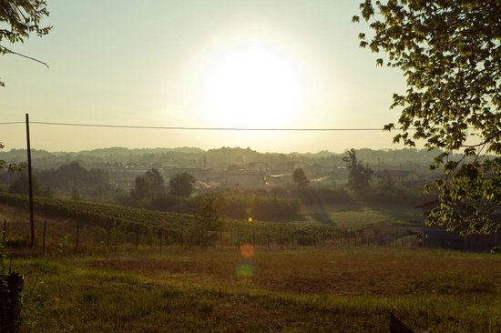 Agrihotel Roero:                   A view onto the city Montà, early morning
