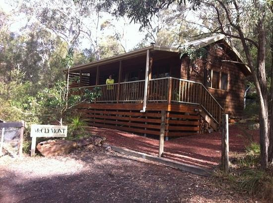 Bingle Tree Retreat: our cabin