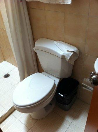 Hotel Oaxaca Mágico: WC