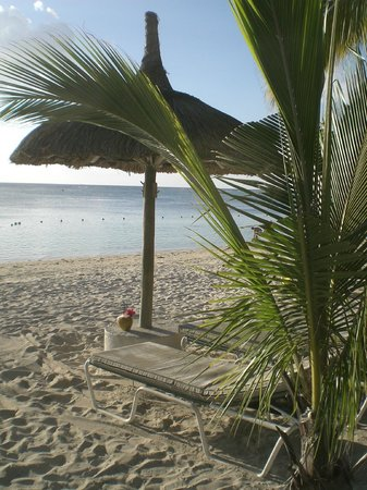 Sugar Beach Golf & Spa Resort:                   Coconut on the beach