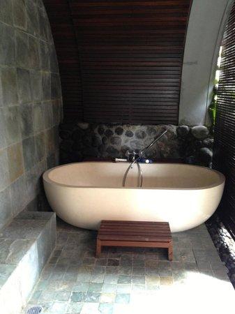 Alila Ubud:                   Tub for Two