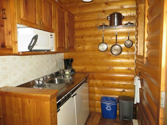 Baker Creek Mountain Resort: Little kitchenette