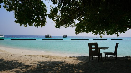 Constance Moofushi:                   breakfirst on beach