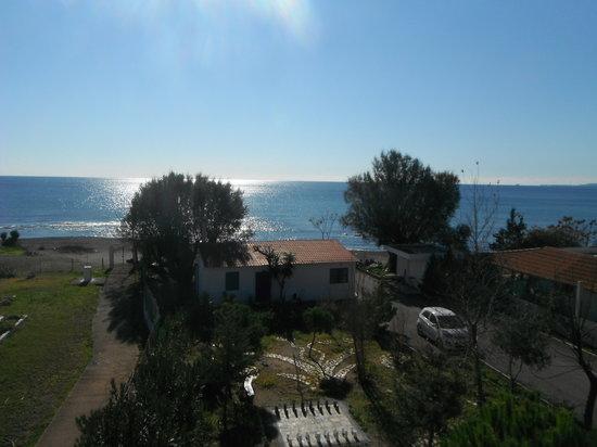 Mandorla Apartments: View of the garden