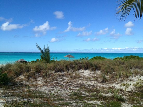 The Sands at Grace Bay:                                                       Looking out from the nearby park