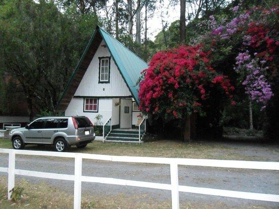 Chiriqui Province, Παναμάς: Cabaña No.6