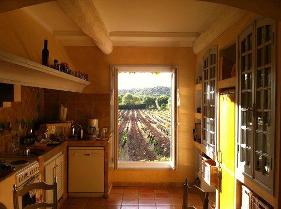 Une Campagne en Provence :                   2012 - Paloma