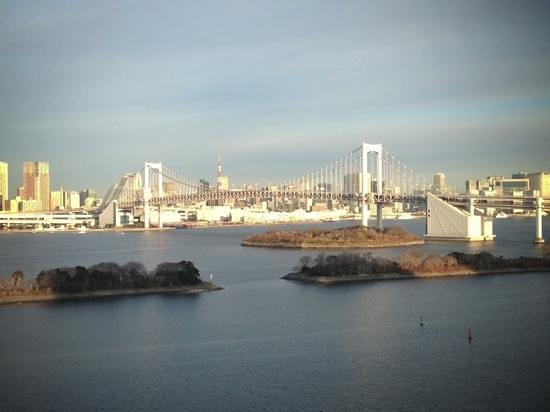Hilton Tokyo Odaiba:                   From the room