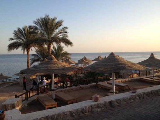 Hilton Sharks Bay Resort:                   Beach bar