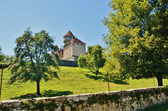 Domaine et Château de Montrottier : Chateau de Montrottier.