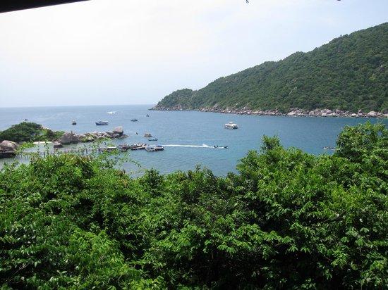 Nangyuan Island Dive Resort: วิวห้องพัก