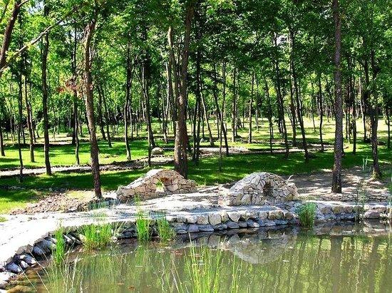 SunGarden Resort:                   SunGarden Golf&Spa Resort woods