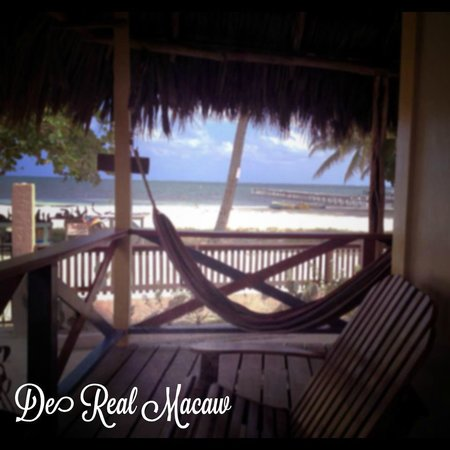 De Real Macaw: View from Beach front room porch