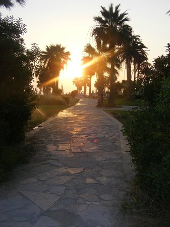 ‪‪Constantinou Bros Athena Beach Hotel‬:                   path from hotel to paphos centre