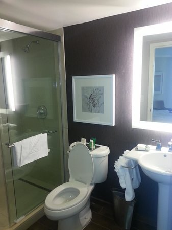 Hilton Marco Island Beach Resort:                   King suite bathroom.