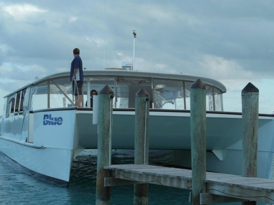 Hawks Cay Resort: Our Catamarran