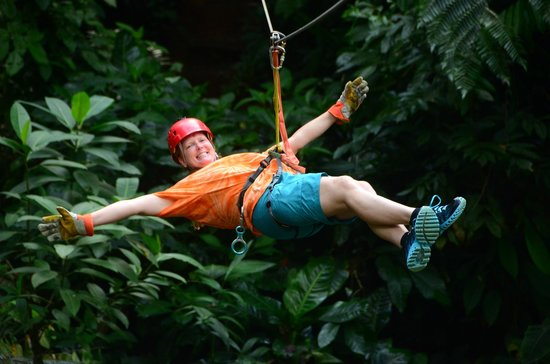 Canopy Safari:                   The last zip line of the tour  :(