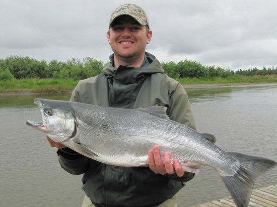 Alagnak Lodge: Silver salmon