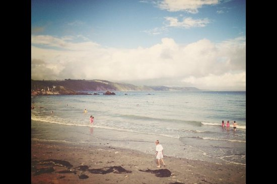 Tregoad Park: Looe beach!
