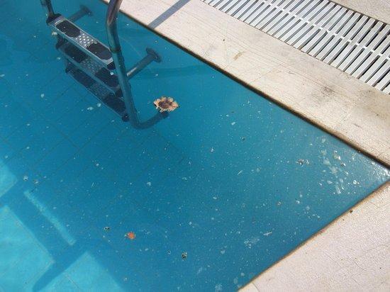 Roda Beach Resort & Spa:                   filthy, dangerous pools