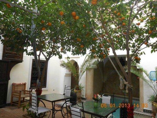 Riad Dar Dialkoum: courtyard