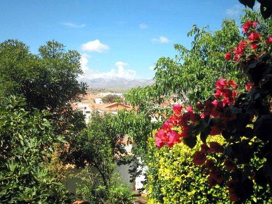 La Selenita : La ville au delà des fleurs