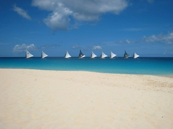Frangipani Beach Resort:                   View of the regatta from Frangipani