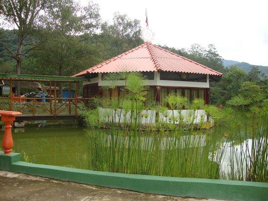 Pousada Terra do Amor:                   sala de yoga com vista para o lago