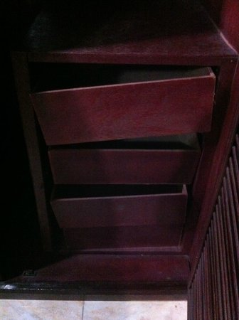 Khmeroyal Hotel:                   The broken cabinet inside the closet