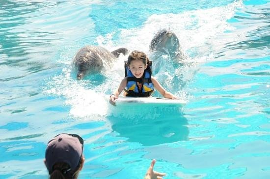 Aquaventuras park:                   surfing with cleopatra and Jogo