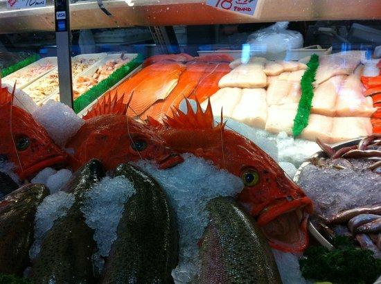 City Fish Co