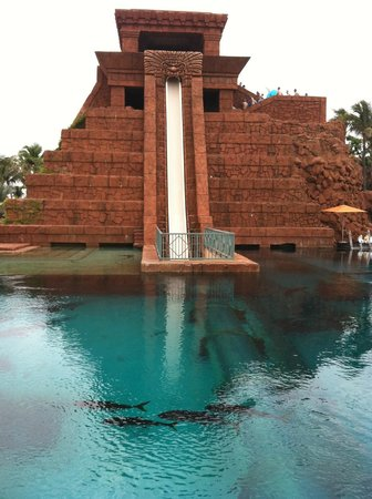 Atlantis - Harborside Resort:                   Fun (and scary) waterslide