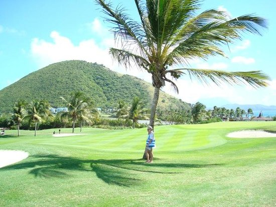 Frigate Bay Resort:                   part of golf course near property