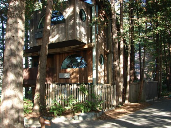 Post Ranch Inn:                   Seclusion amongst the redwoods.