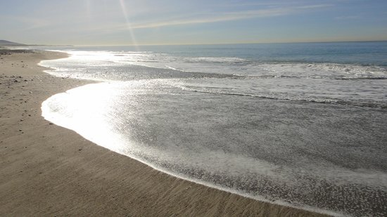 Quality Inn & Suites Oceanview:                   Beach at Doheny State Park across the street
