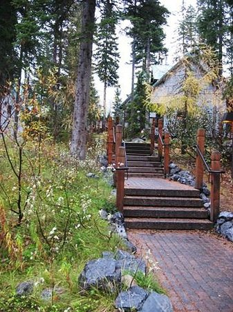 Emerald Lake Lodge:                   Walk near hotel