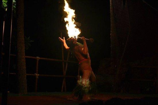 Royal Kona Resort:                   fire dancer at the luau