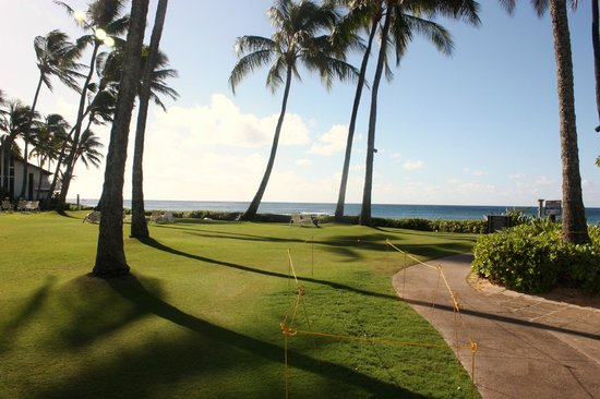 Kiahuna Plantation Resort:                   Large grassed area above the beach