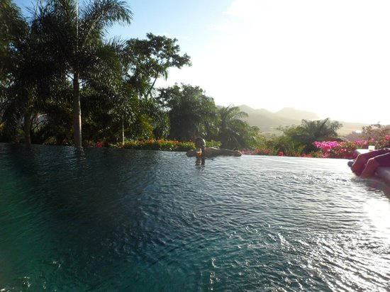 Finca Las Nubes:                   chill in the pool with a cold drink