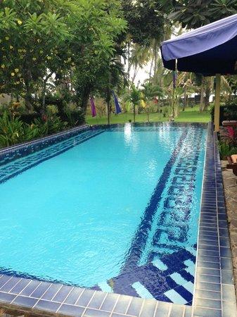 Pool - Picture of Bali au Naturel, Bondalem - TripAdvisor