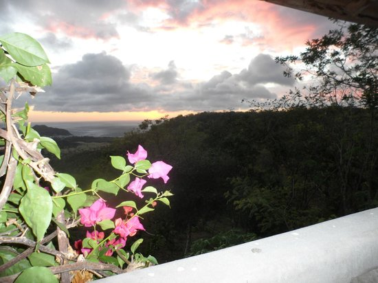 Finca Las Nubes:                   sunset takes youre breath away