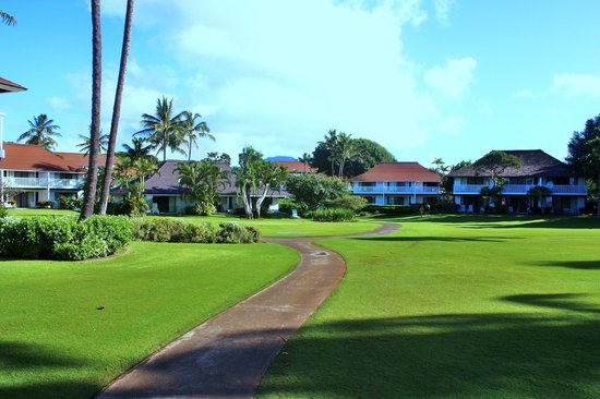 Kiahuna Plantation Resort:                   Lust some of the lush grounds