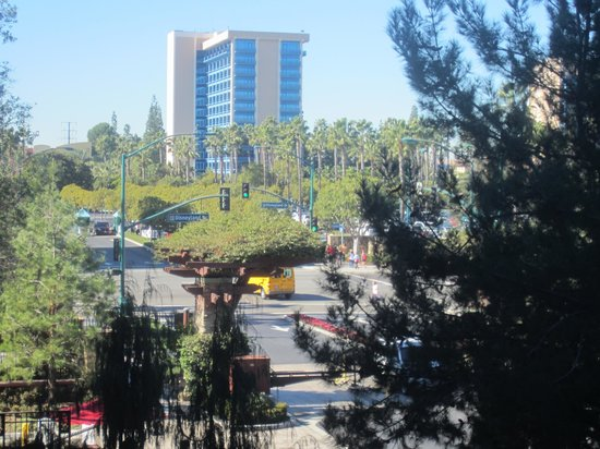 Disney's Grand Californian Hotel & Spa:                   view