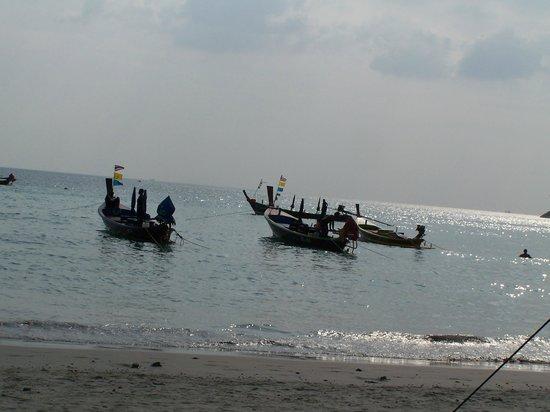 The Aspasia Phuket: Kata Beach